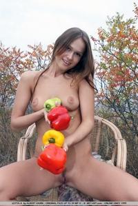 Lotta - Farming