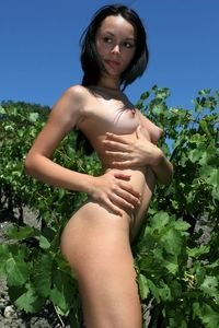 Young beauty Olivia naked on the vineyard